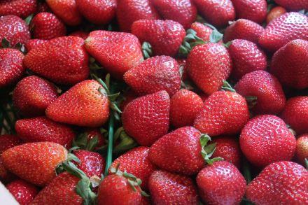 strawberry flat
