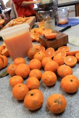 satsuma assembly line
