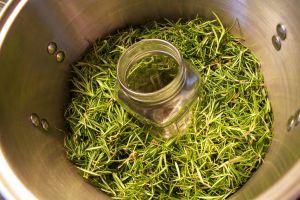 pot of rosemary leaves