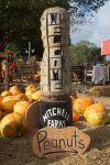 mitchell farms peanuts